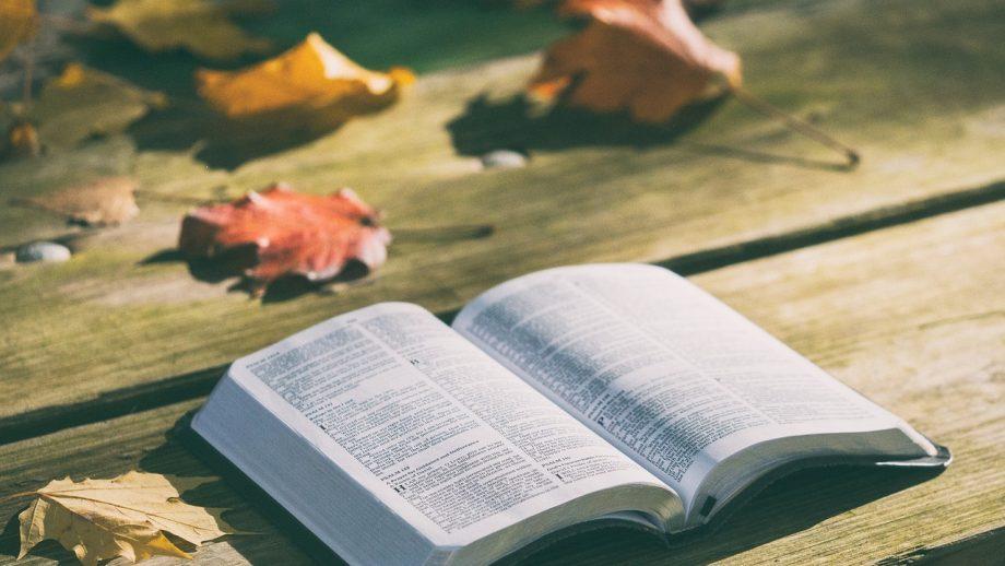 Iată de ce Biblia este mai importantă decât ai crezut
